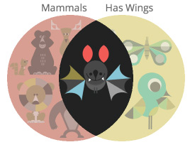 This Venn diagram illustrates that bats are mammals that have wings.